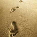 Dejando la huella de algunos primeros pasos